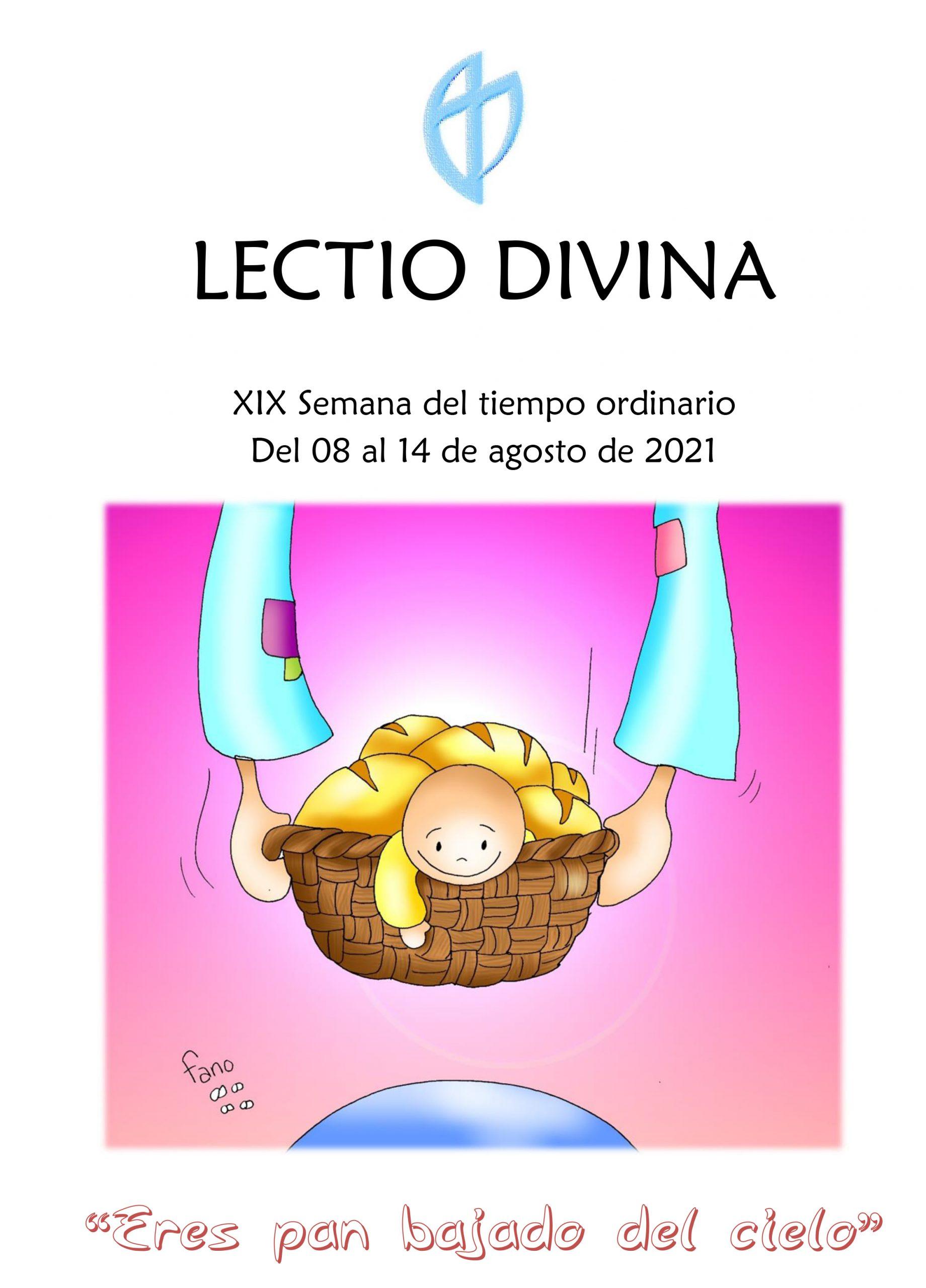 XIX Semana del tiempo ordinario (del 08 al 14 de agosto de 2021)